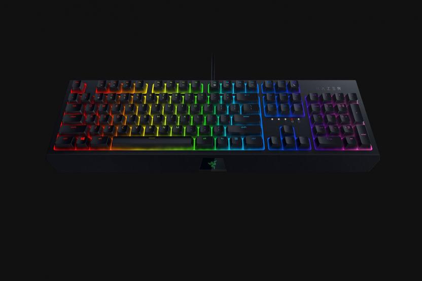 Razer Blackwidow gaming keyboard with green switch for Fortnite